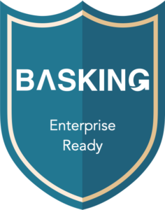 IT Security at Basking - Security Mechanisms
